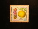 TIMBRE NEUF TUNISIE - CITRUS DECUMANA - TUNISIA - 100m - ELMEKKI DE LA RUE - REPUBLIQUE TUNISIENNE - Arume Agrumes - Fruits