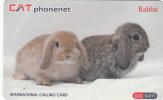 THAILAND - Rabbits, CAT Prepaid Card 300 Baht, Tirage 20000, Exp.date 12/14, Used - Konijnen