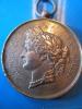 Médaille/Société Nationale De Tir Des Communes De France/Championnat/1887    D53 - France