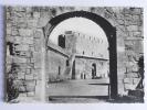 AIGUES MORTES - Porte De La Camargue, Porte De La Gardette Vue De La Douane - Aigues-Mortes