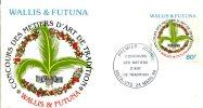 Wallis Et Futuna      FDC    Premier Jour  Métiers D'Art De Tradition   24 Mars 94