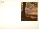 Kalender 1957 - Bos In De Herfst - Calendriers