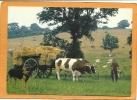 49  SAINT  CHRISTOPHE  DU  BOIS   Mr  JOEL  FRAPPIER  20  06  1992 - France