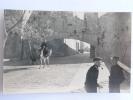 PENISCOLA - Puerta PAPA LUNA - Espagne