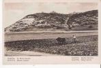 HAIFFA LE MONT CARMEL (ATTELAGE DE BOEUFS) - Israele