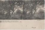 CARTES S.TEREO ( Guerre De 14 18 ) - Estereoscópicas