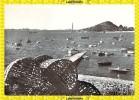 CARANTEC - Le Port - CPM - Carantec