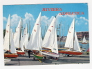 VELE Pronte Per La Regata - Riviera Adriatica - Cartolina FG C V 1975 - Barche