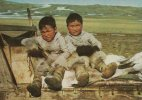Greenland - Boys From THULE     The Northern Colony Of Greenland.  B-669 - Greenland