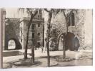 TARRAGONA - Foro Romano - Tarragona