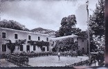 QUISSAC COLONNIE - Quissac