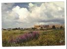 CPA - 29 - Finistère - Penmarch - Village Typique Dans Le Pays Bigouden : Landes, Village Au Loin - Penmarch