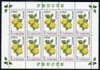 ROMANIA 2002 Fruits Sheetlets MNH / **.  Michel 5694-97 - Blocks & Sheetlets