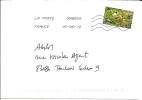 Timbre Autocollant De Carnet Lettre Verte___  Groseilles - Marcophilie (Lettres)