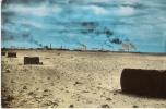 ALGERIE - HASSI MESSAOUD  - (Oasis )  LES  TORCHERES - Autres Villes