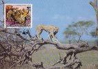 D08146 CARTE MAXIMUM CARD 1984 HAUTE VOLTA - CHEETAH CP ORIGINAL - Big Cats (cats Of Prey)