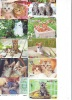 LOT 50 Telecartes + Prepayees Differentes Japon * CHATS * CATS  * KATZE * KATTEN (LOT 235) Prepaid Cards Japan - Telefoonkaarten