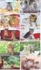 LOT 50 Telecartes + Prepayees Differentes Japon * CHATS * CATS  * KATZE * KATTEN (LOT 241) Prepaid Cards Japan - Télécartes