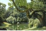 CP59099 - LILLE - Le Jardin Vauban - Lille