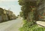 17404 - POMEROLS - LA ROUTE DE MEZE - Frankreich