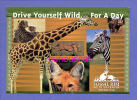 ADVERTISEMENT REKLAME CARD With GIRAFFE ZEBRA JAGUAR RHINOCEROS NASHORN - Pubblicitari