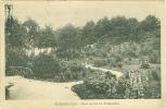 Gelsenkirchen,  Neue Grotte Im Stadtgarten, 1921 - Gelsenkirchen