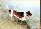 J.Constable : Chien Poursuivant Une Rat Dans L'eau - Pittura & Quadri