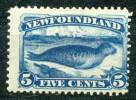 Kanada (Britische Kolonien), Neufundland - Mi.Nr.  34 C -     Falz / Spuren - 1865-1902