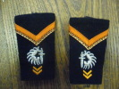 Paire De Fourreaux épaulettes Soldat CHASSEUR PARACHUTISTE - Unclassified