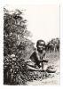 "DAHOMEY  /  PETITE  AFRICAINE  EGRENANT  DES  FRUITS  DE  PALME  /  Carte Publicitaire  ""MARGARINE  ASTRA"" ( Années 50 ) - Dahomey"