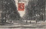 MONTGERON (avenue Du Chateau.. ) - Montgeron