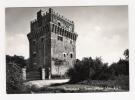 MONTIGNANO - Torre Albani - Cartolina FG BN V 1977 - Italia