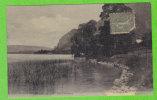 VEYRIER DU LAC - Lac D´Annecy (CP Toilée) - Veyrier