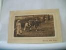 GUERNSEY MILK MAIDS -  1911 - ANIMATION (EDITOR ?) - Guernsey