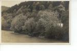 Bord De Rivière Ou De Lac, Maison Oblitération Genève 1927 - Cartes Postales