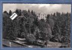 Carte Postale Allemagne Jagdschloss Wartenberg Trés Beau Plan - Schlesien