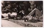 Postcard - Rovinj, Island  Katerina, Camping   (7097) - Croatia