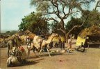 CPA-1970-NIGER-SCENES VILLAGEOISES-VILLAGES-TOUAREGS-TBE - Niger
