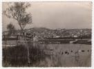 Postcard - Ohrid     (V 13551) - Macédoine