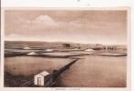 DJIBOUTI 13 LES SALINES - Dschibuti