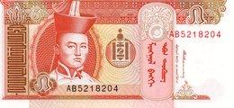 MONGOLIA 10000 10.000 TUGRIK 2009 UNC P 69 - Mongolie