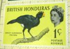 British Honduras 1962 Great Curassow 1c - Mint - British Honduras (...-1970)