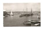 Cp, 14, Dives-sur-Mer, Le Port, Voyagée (non Oblitérée) - Dives