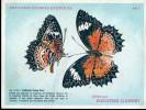 Papillons Diurnes Exotiques Offert Par Biscottes Clément - Altri