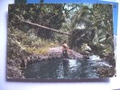 Tahiti Sous Bois Polynésien - Tahiti