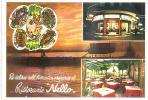 59118)cartolina Illustratoria Rimini - Ristorante Nello Al Mare - Rimini