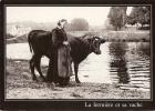 "CPM Carte ""LA Fermière Et Sa Vache"" Scénette Bretagne - Bretagne"