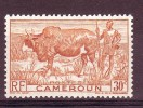 CAMEROUN - Timbre N°277 Neuf - Unclassified