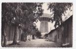 MAISON CARREE  BELFORT  LE 45 EME REGIMENT DES TRANSMISSIONS - Algiers