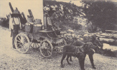 Repro - Jura Pittoresque   - VOITURE A CHIEN - Attelage  Transport Du Lait Dans Les Montagnes - Franche-Comté